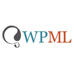WordPress Multilingual Plugin icon